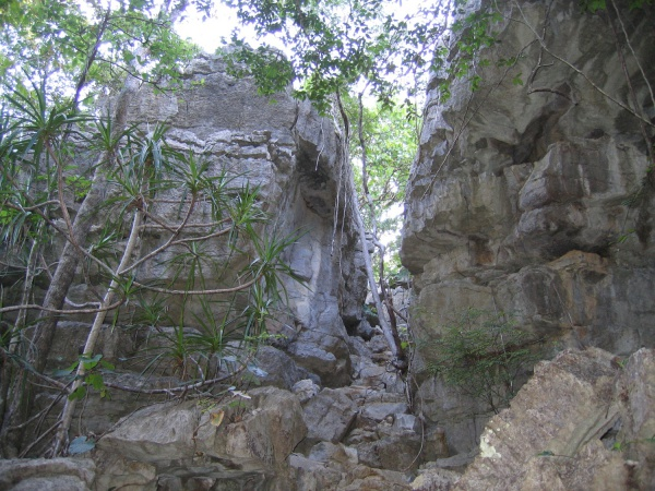Ankarana National Park 001.jpg