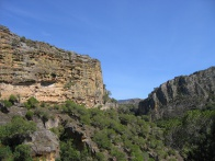 Isalo National Park 047.jpg